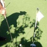 Putting Green Golf Center Court Nature Beach Resort Quinta Al Gharb Ingrina Zavial Beach